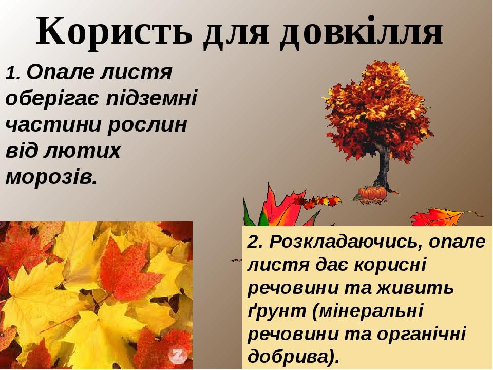 """Міні-проект: """"Опале листя: користь чи шкода """""""