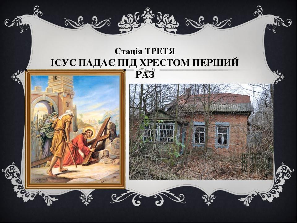 Стація ТРЕТЯ ІСУС ПАДАЄ ПІД ХРЕСТОМ ПЕРШИЙ РАЗ