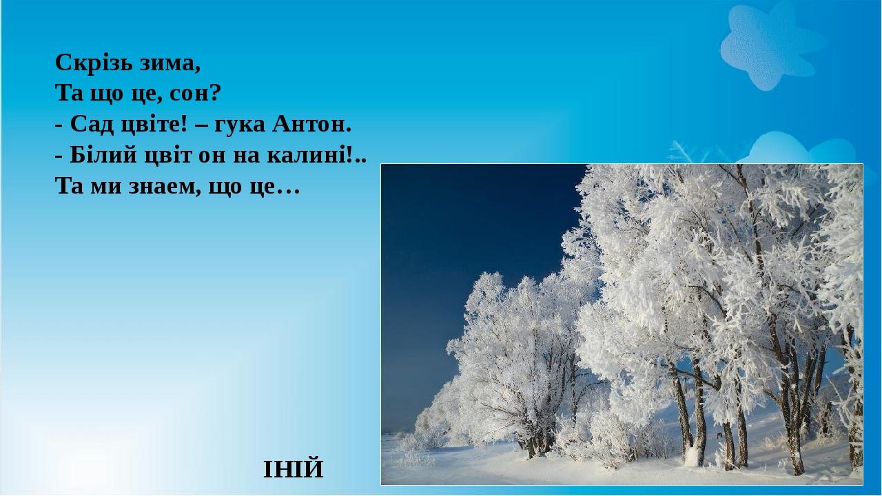 Скрізь зима, Та що це, сон? - Сад цвіте! – гука Антон. - Білий цвіт он на калині!.. Та ми знаем, що це… ІНІЙ