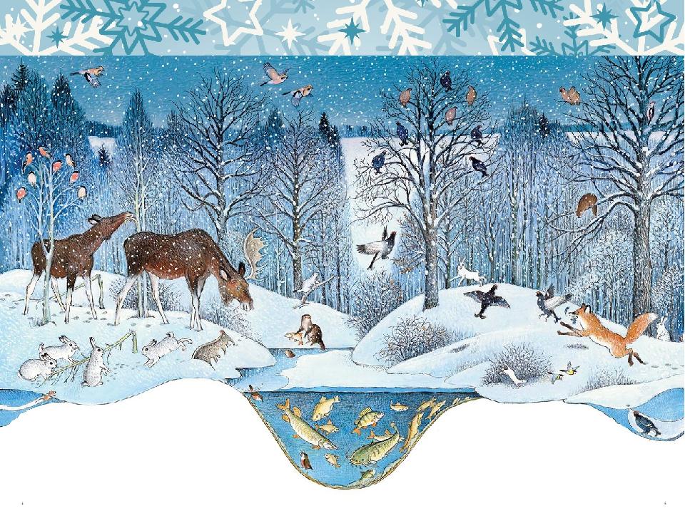 тебе где зимуют дикие животные картинки более изобретательны
