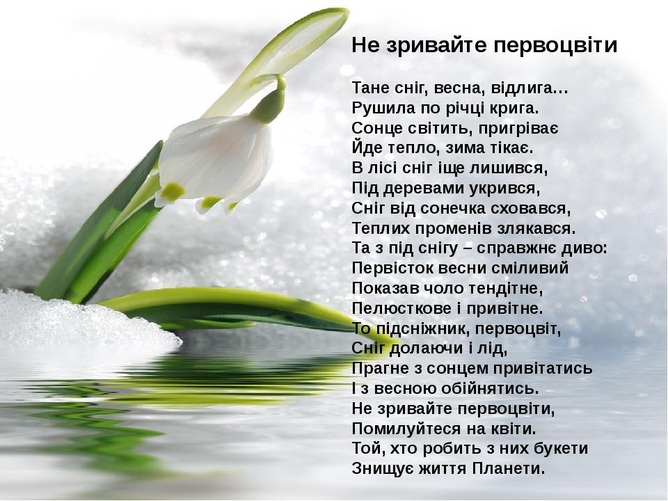 Не зривайте первоцвіти Тане сніг, весна, відлига… Рушила по річці крига. Сонце світить, пригріває Йде тепло, зима тікає. В лісі сніг іще лишився, П...