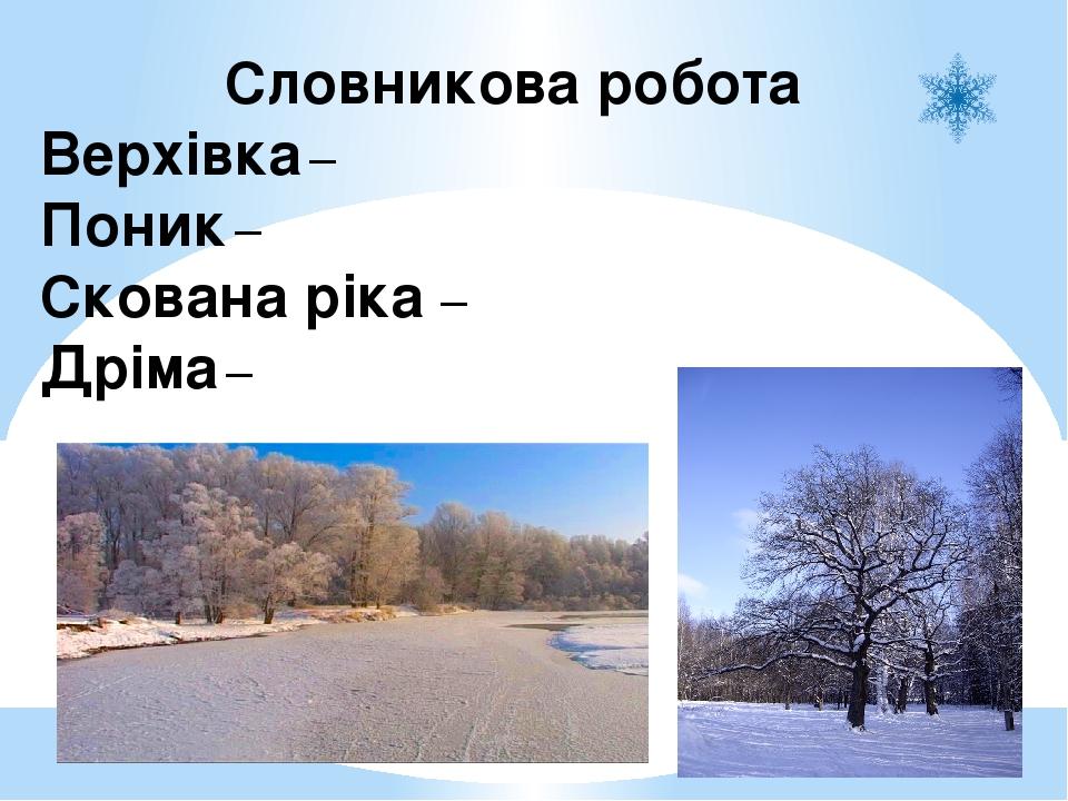 Словникова робота Верхівка – верхня частина дерева Поник – схилився Скована ріка – вкрита льодом Дріма – неміцно спить