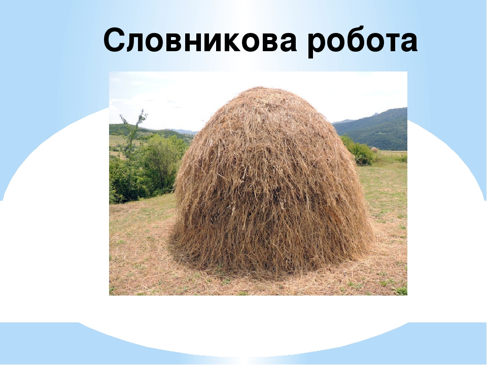копичка Словникова робота
