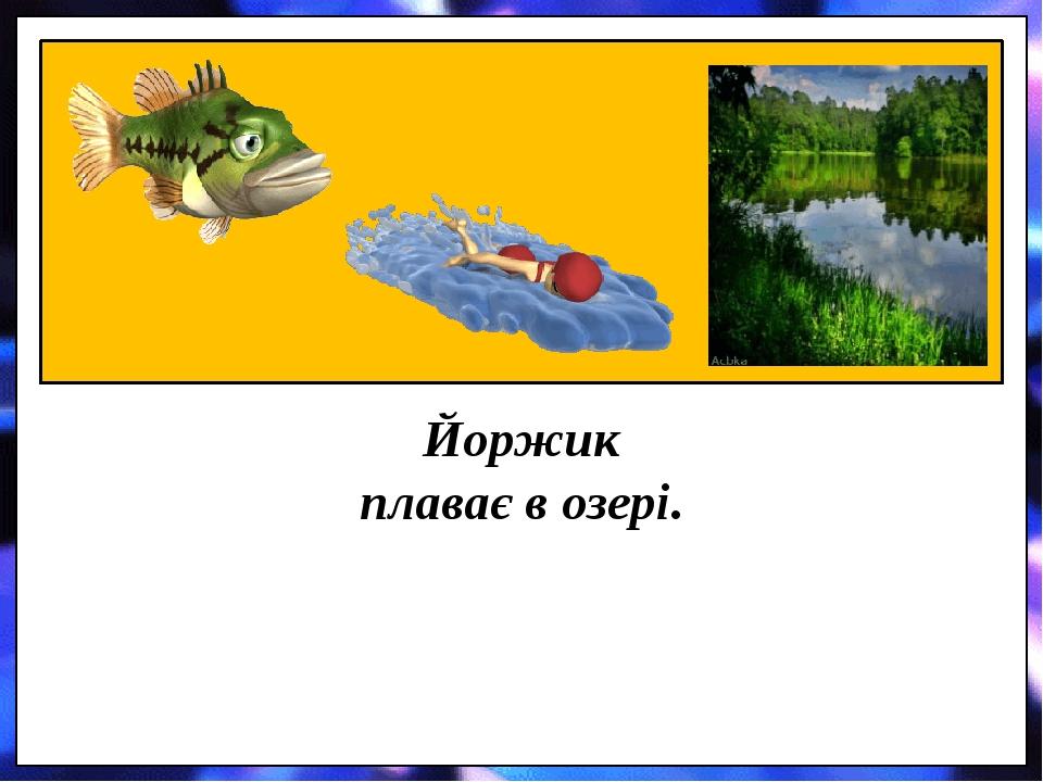 Йоржик плаває в озері.