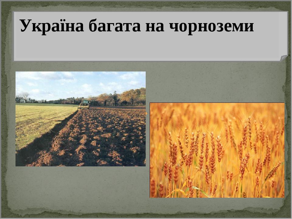 Україна багата на чорноземи