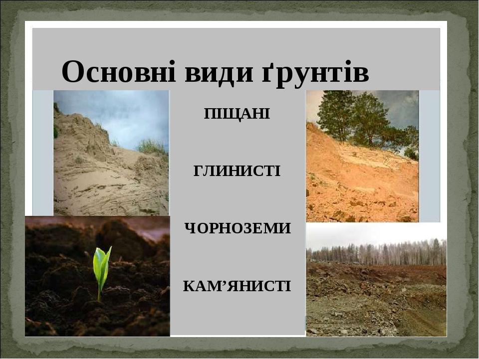 ПІЩАНІ ГЛИНИСТІ ЧОРНОЗЕМИ КАМ'ЯНИСТІ Основні види ґрунтів