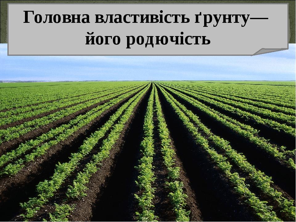 Головна властивість ґрунту— його родючість