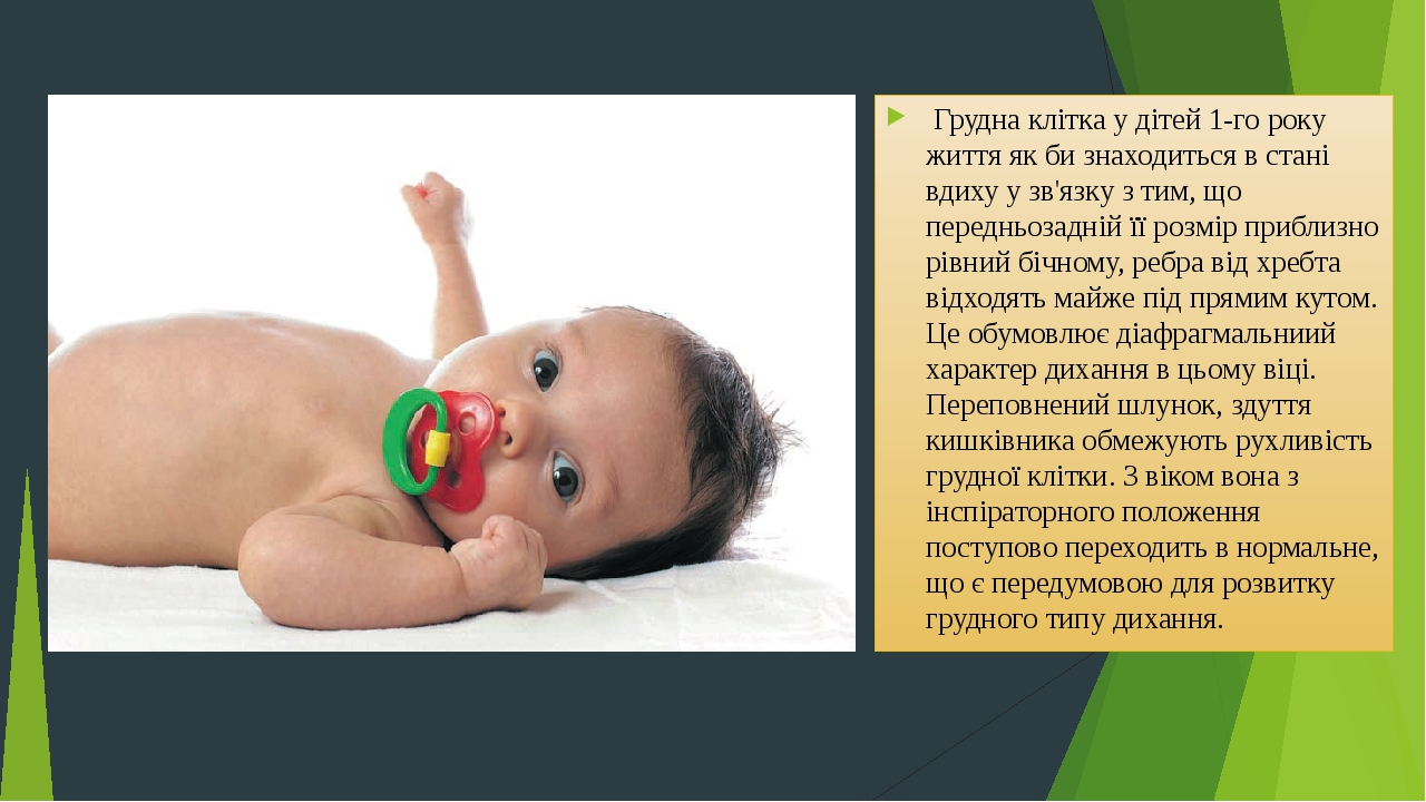 Грудна клітка у дітей 1-го року життя як би знаходиться в стані вдиху у зв'язку з тим, що передньозадній її розмір приблизно рівний бічному, ребра...
