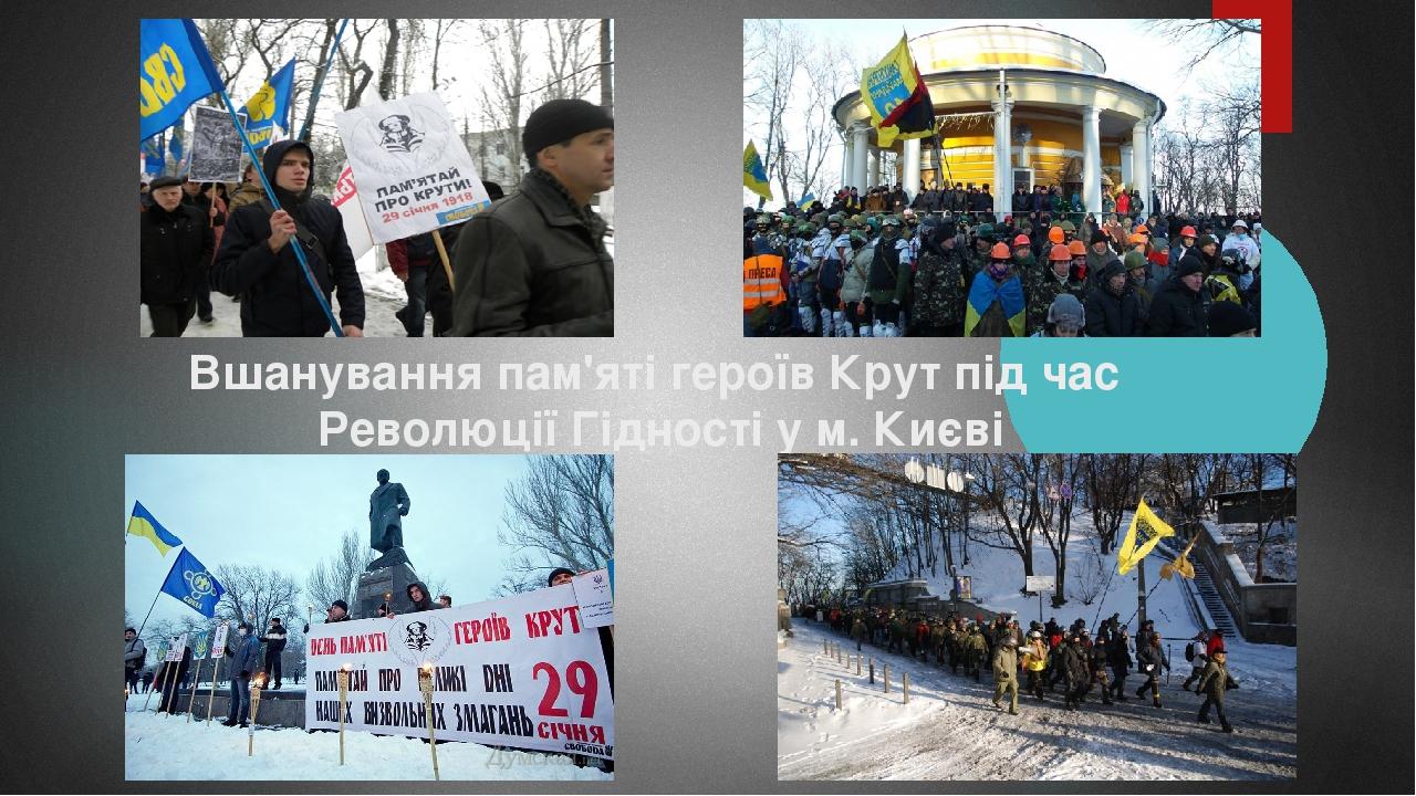 Вшанування пам'яті героїв Крут під час Революції Гідності у м. Києві