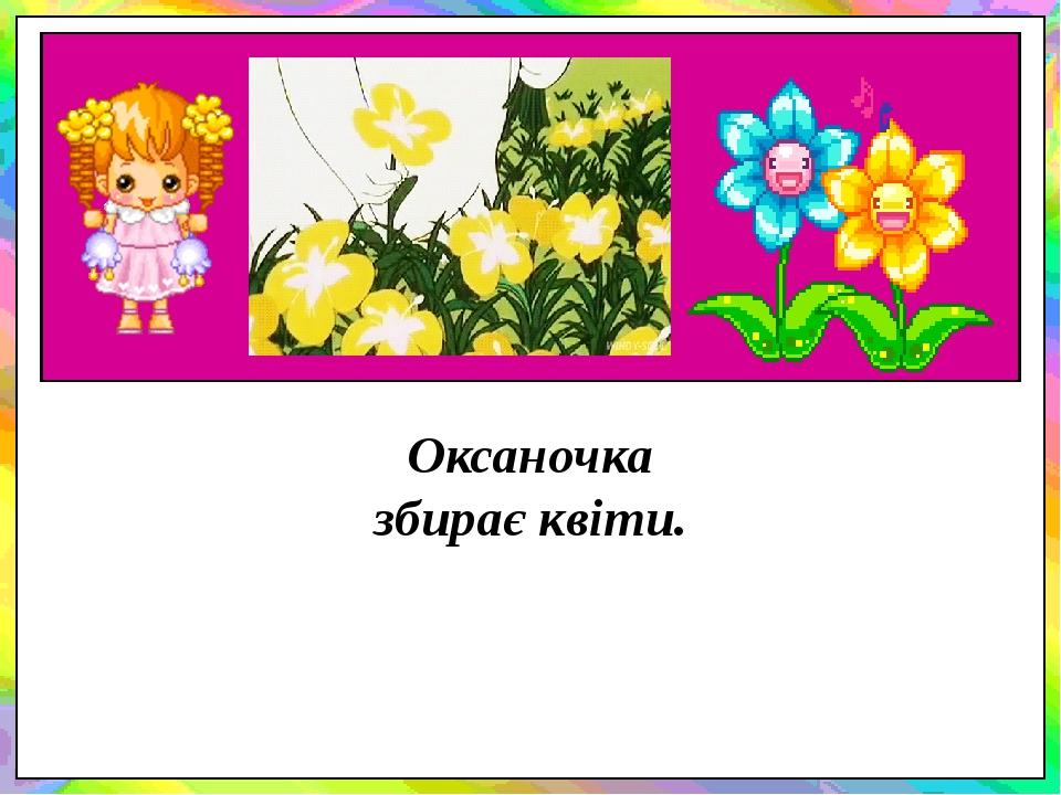 Оксаночка збирає квіти.