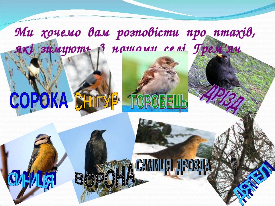 Ми хочемо вам розповісти про птахів, які зимують в нашому селі Грем'яч