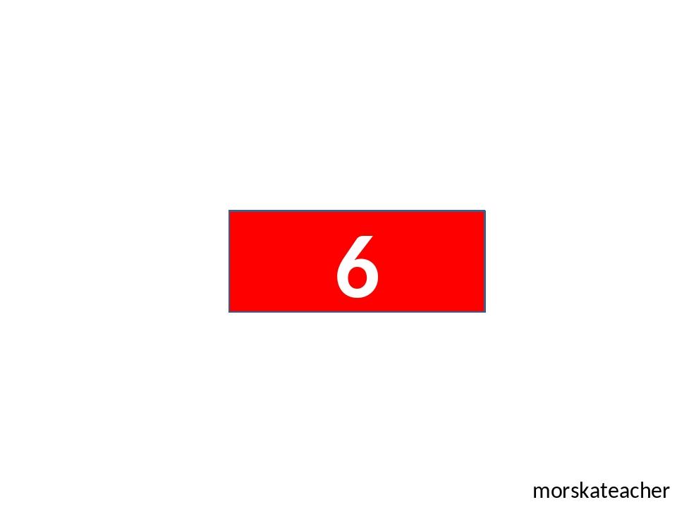 morskateacher 6
