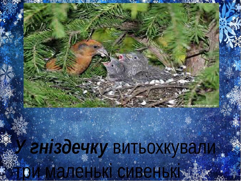У гніздечку витьохкували три маленькі сивенькі пташки.