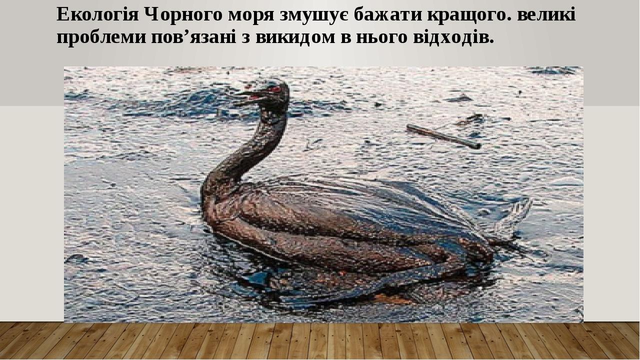 Екологія Чорного моря змушує бажати кращого. великі проблеми пов'язані з викидом в нього відходів.