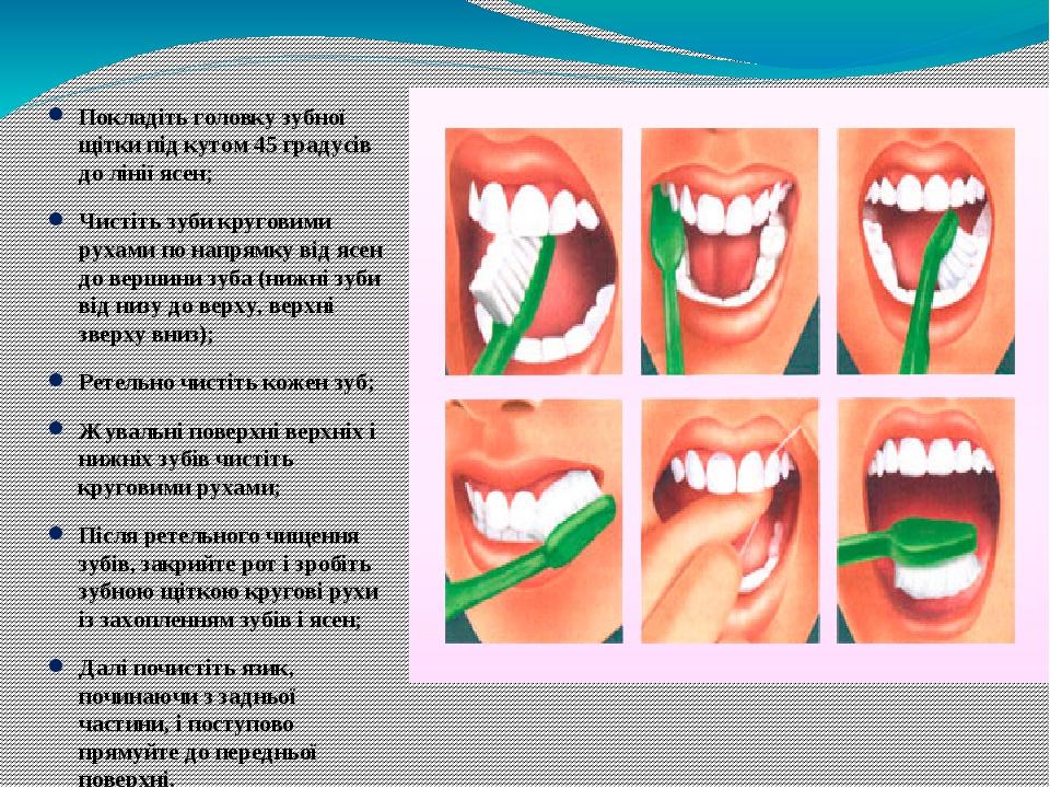 Покладіть головку зубної щітки під кутом 45 градусів до лінії ясен; Чистіть зуби круговими рухами по напрямку від ясен до вершини зуба (нижні зуби ...