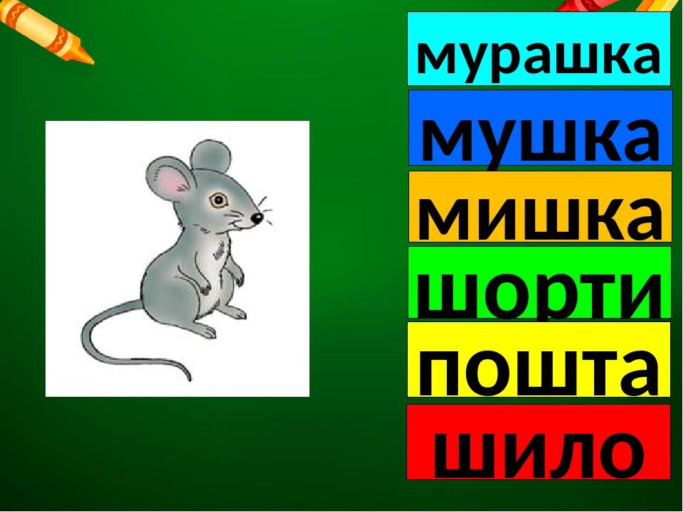 мурашка мушка мишка шорти пошта шило