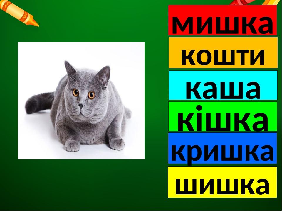 мишка кошти каша кішка кришка шишка