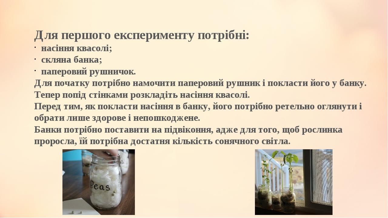 Для першого експерименту потрібні: насіння квасолі; скляна банка; паперовий рушничок. Для початку потрібно намочити паперовий рушник і покласти йог...