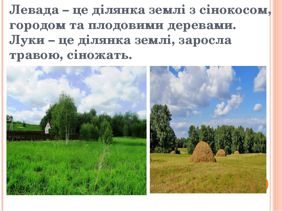 Левада – це ділянка землі з сінокосом, городом та плодовими деревами. Луки – це ділянка землі, заросла травою, сіножать.