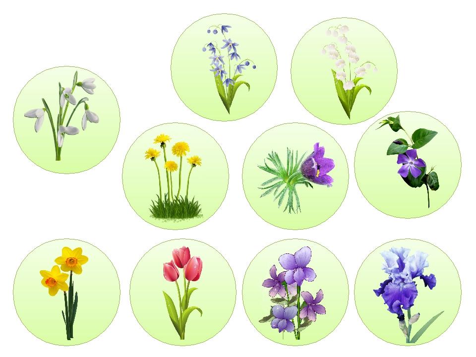 Дидактична гра «Весняні квіти»