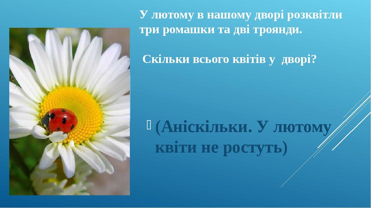 У лютому в нашому дворі розквітли три ромашки та дві троянди. Скільки всього квітів у дворі? (Аніскільки. У лютому квіти не ростуть)