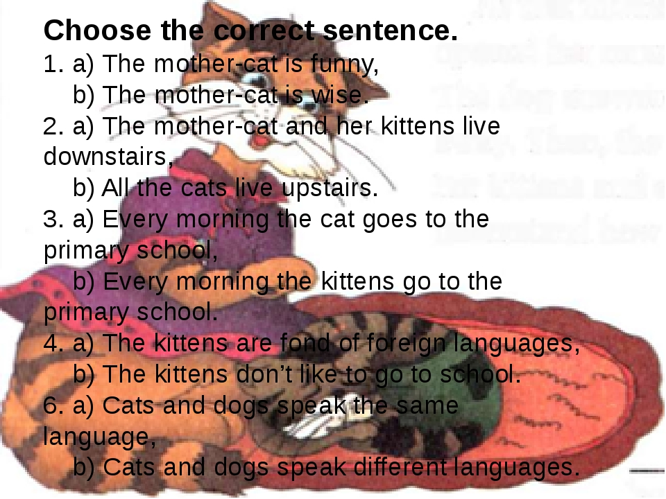 Choose the correct sentence. 1. a) The mother-cat is funny, b) The mother-cat is wise. 2. a) The mother-cat and her kittens live downstairs, b) All...