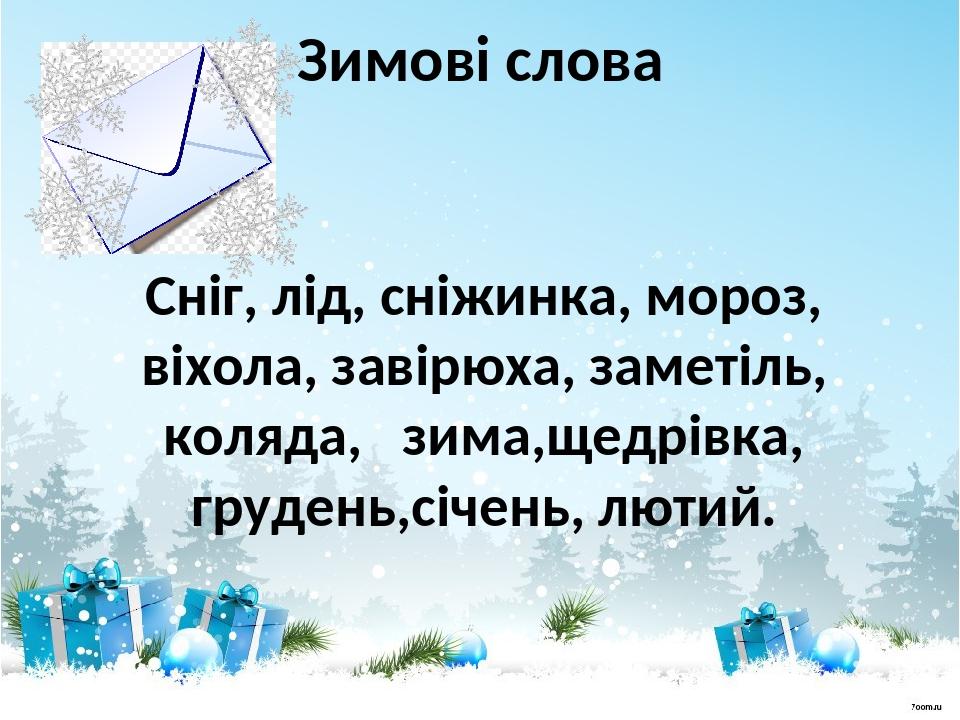 Зимові слова Сніг, лід, сніжинка, мороз, віхола, завірюха, заметіль, коляда, зима,щедрівка, грудень,січень, лютий.