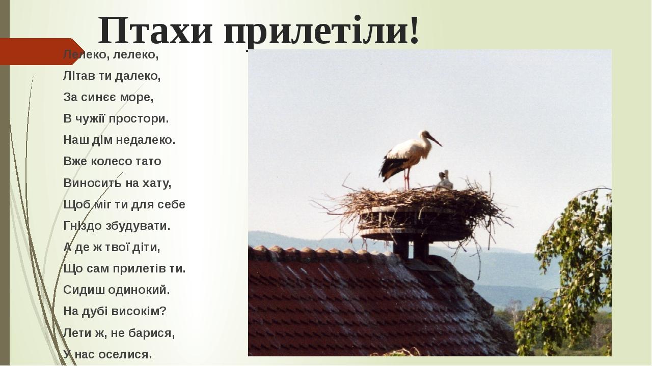Птахи прилетіли! Лелеко, лелеко, Літав ти далеко, За синєє море, В чужії простори. Наш дім недалеко. Вже колесо тато Виносить на хату, Щоб міг ти д...