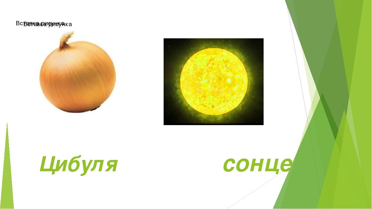 Цибуля сонце