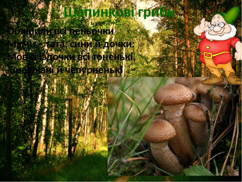 Шапинкові гриби Обліпили всі пеньочки Мами – тата, сини й дочки: Мов гвіздочки всі тоненькі, Вишукані й чепурненькі