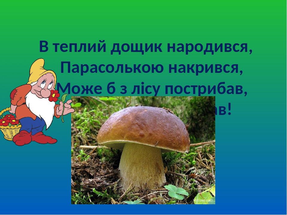 В теплий дощик народився, Парасолькою накрився, Може б з лісу пострибав, Якби другу ногу мав!