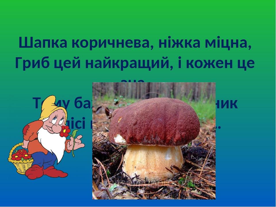 Шапка коричнева, ніжка міцна, Гриб цей найкращий, і кожен це зна, Тому бажає усякий грибник В лісі великий знайти …