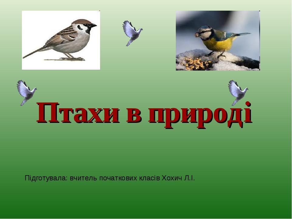 Птахи в природі Підготувала: вчитель початкових класів Хохич Л.І.