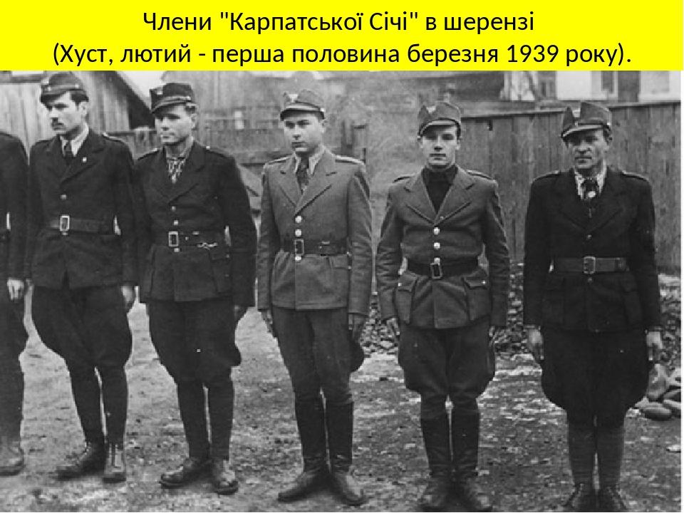 """Члени """"Карпатської Січі"""" в шерензі (Хуст, лютий - перша половина березня 1939 року)."""