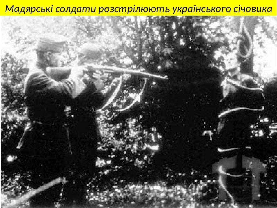 Мадярські солдати розстрілюють українського січовика