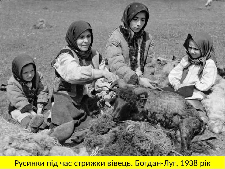 Русинки під час стрижки вівець. Богдан-Луг, 1938 рік