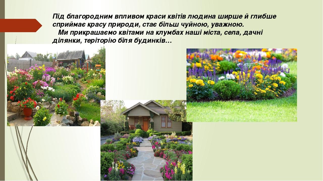 Під благородним впливом краси квітів людина ширше й глибше сприймає красу природи, стає більш чуйною, уважною. Ми прикрашаємо квітами на клумбах на...