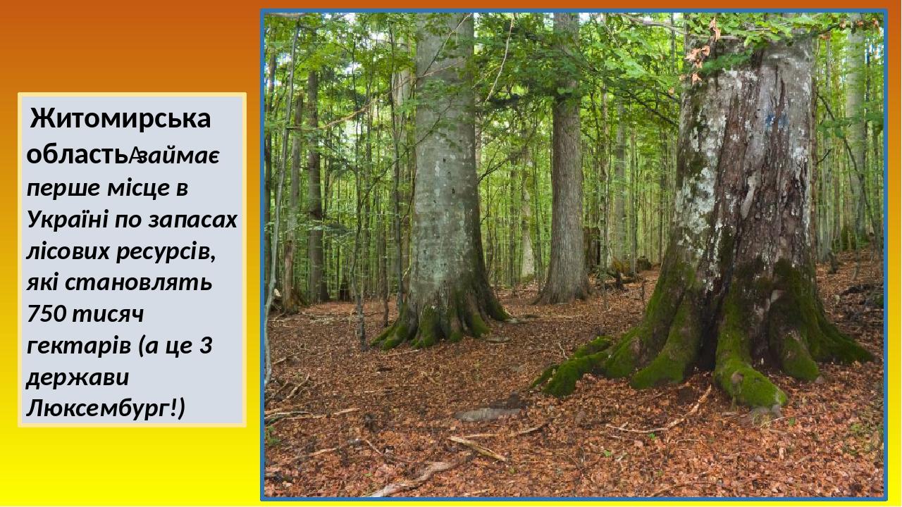 Житомирська областьзаймає перше місце в Україні по запасах лісових ресурсів, які становлять 750 тисяч гектарів (а це 3 держави Люксембург!)