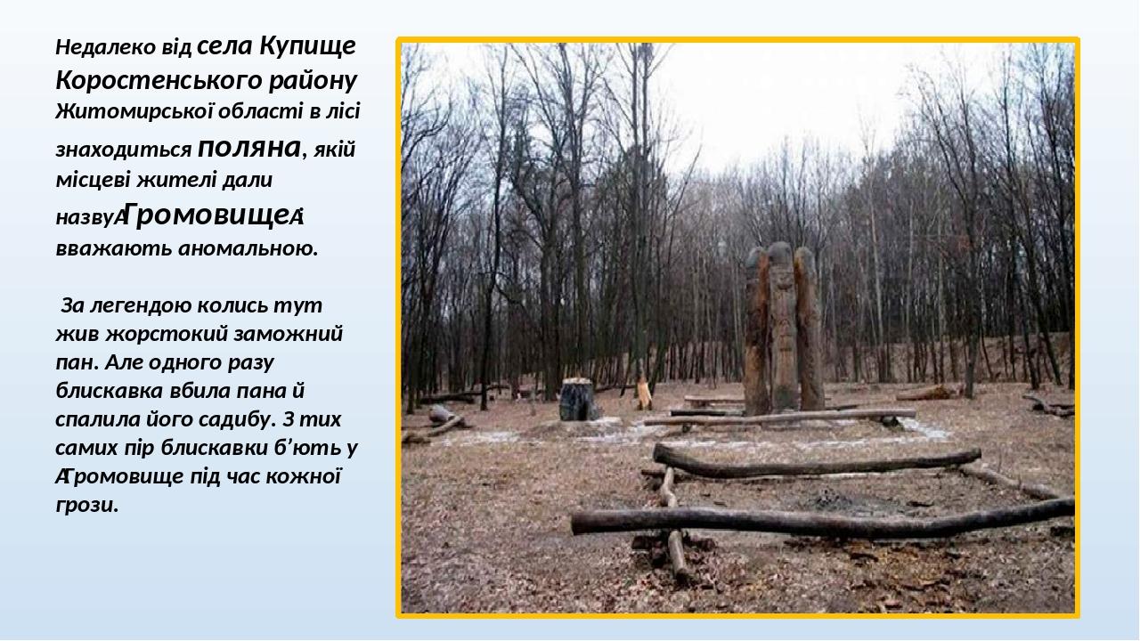 Недалеко від села Купище Коростенського району Житомирської області в лісі знаходиться поляна, якій місцеві жителі дали назвуГромовищеі вважають ...