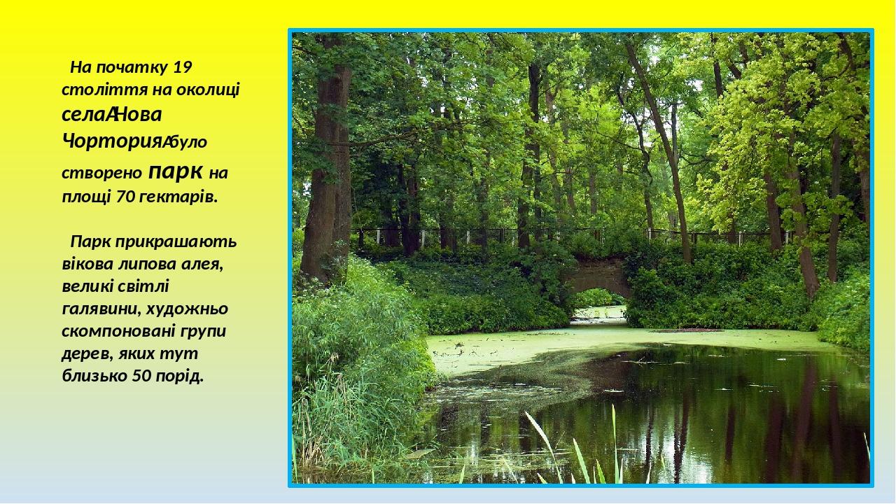 На початку 19 століття на околиці селаНова Чорториябуло створено парк на площі 70 гектарів. Парк прикрашають вікова липова алея, великі світлі га...