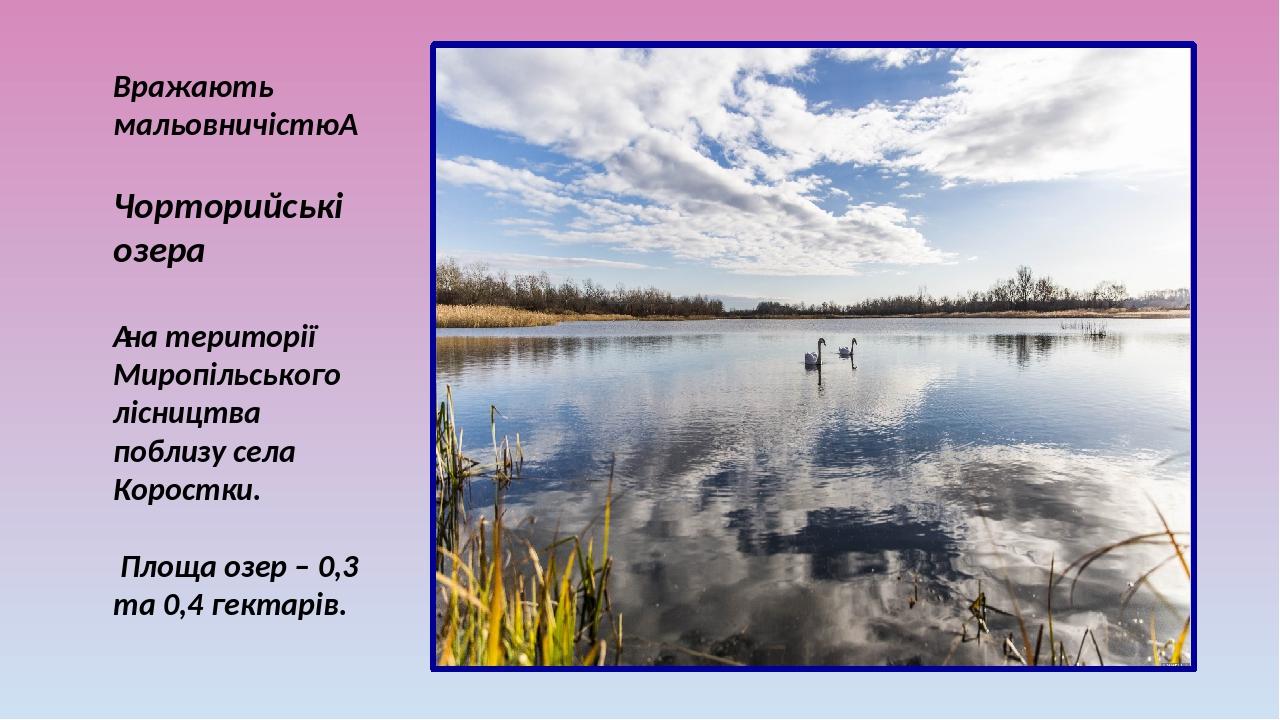 Вражають мальовничістю Чорторийські озера на території Миропільського лісництва поблизу села Коростки. Площа озер – 0,3 та 0,4 гектарів.