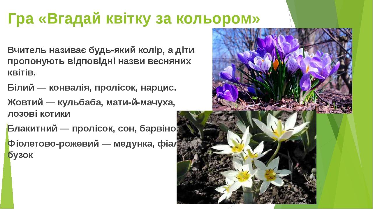 Гра «Вгадай квітку за кольором» Вчитель називає будь-який колір, а діти пропонують відповідні назви весняних квітів. Білий — конвалія, пролісок, на...