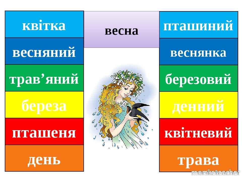 пташиний веснянка березовий денний квітневий трава весна квітка весняний трав'яний береза пташеня день