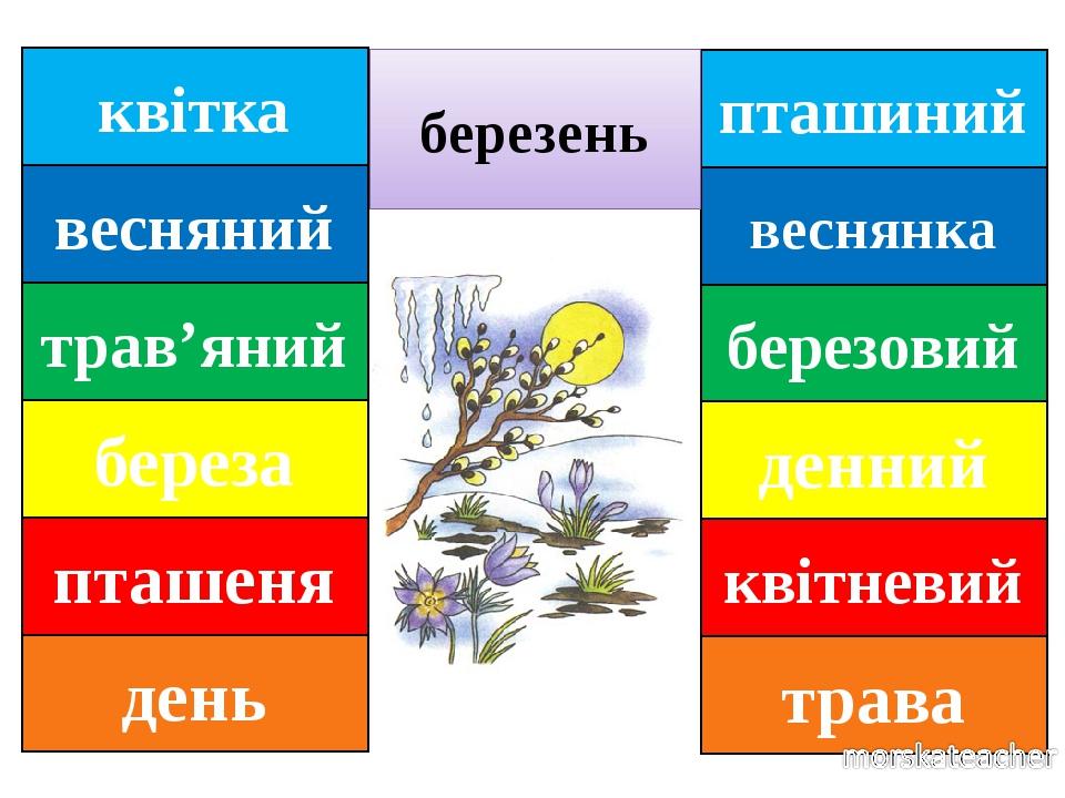 пташиний веснянка березовий денний квітневий трава березень квітка весняний трав'яний береза пташеня день