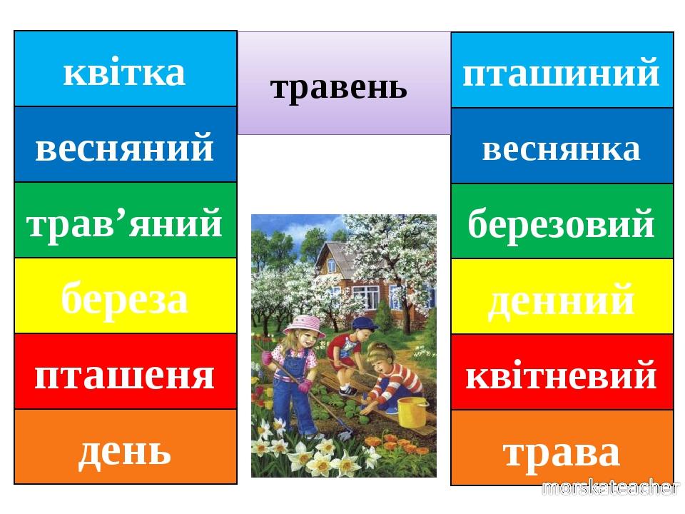 пташиний веснянка березовий денний квітневий трава травень квітка весняний трав'яний береза пташеня день