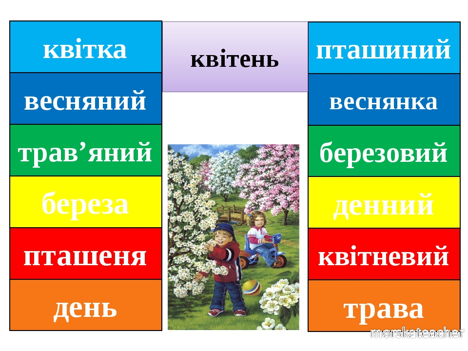 пташиний веснянка березовий денний квітневий трава квітень квітка весняний трав'яний береза пташеня день