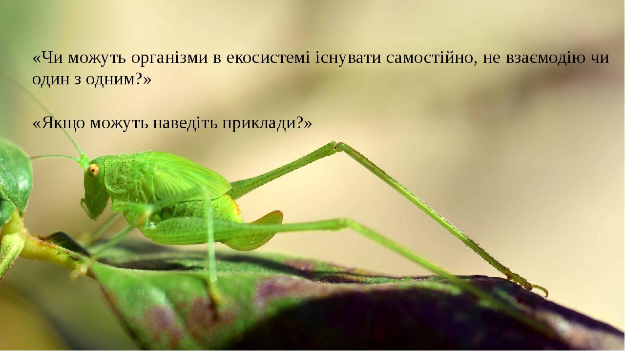 «Чи можуть організми в екосистемі існувати самостійно, не взаємодію чи один з одним?» «Якщо можуть наведіть приклади?»