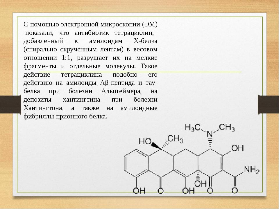 С помощью электронной микроскопии (ЭМ) показали, что антибиотик тетрациклин, добавленный к амилоидам Х-белка (спирально скрученным лентам) в весово...