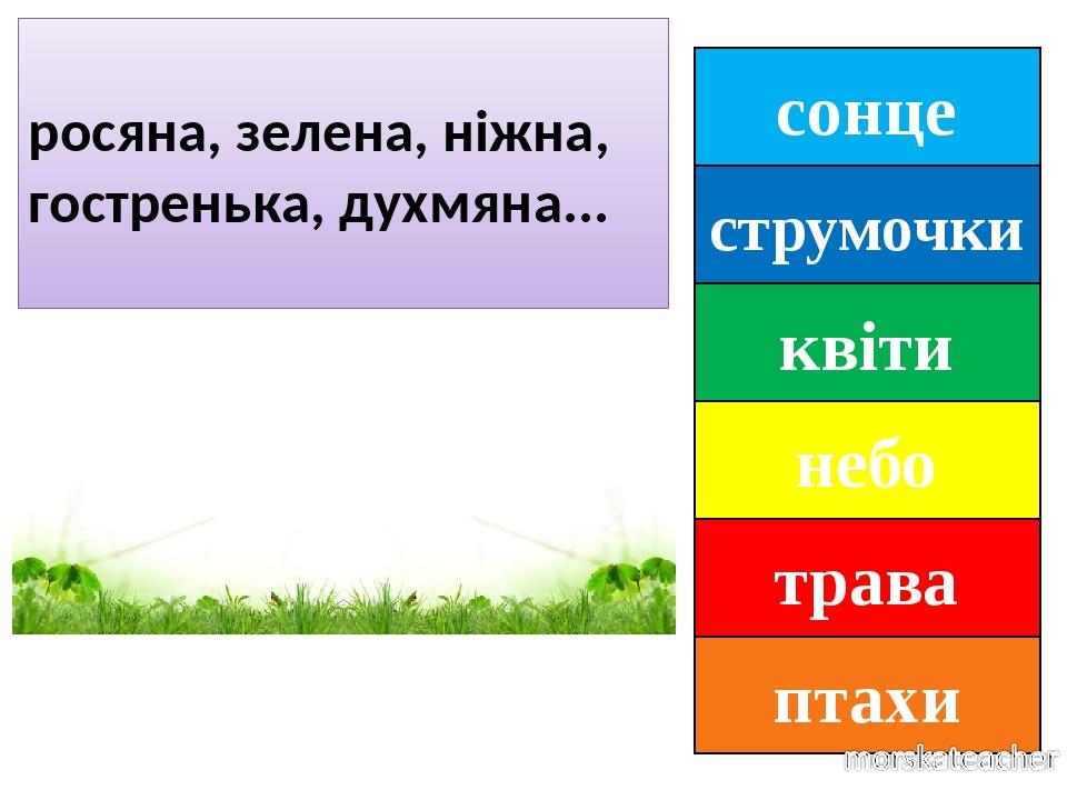 сонце струмочки квіти небо трава птахи росяна, зелена, ніжна, гостренька, духмяна...