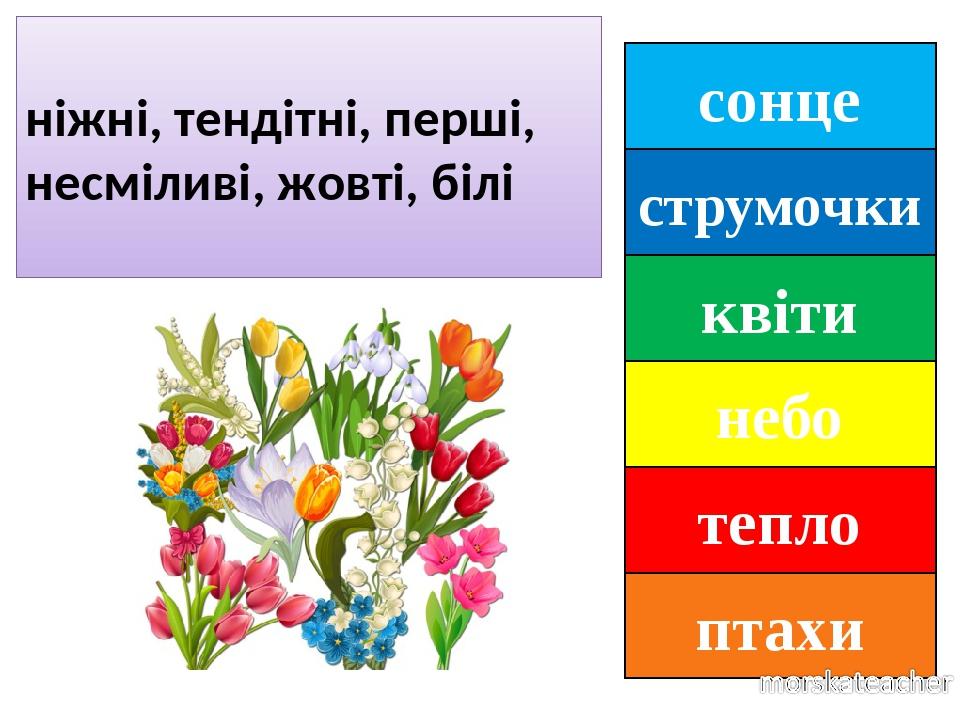 сонце струмочки квіти небо тепло птахи ніжні, тендітні, перші, несміливі, жовті, білі